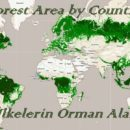 Forest area by country-ulkelerin orman-alani